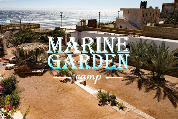 Guide-to-dahab-marine-garden-underpressure-divers a