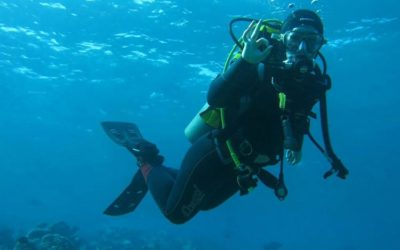 Can I become a pro diver after just one trip to Dahab?
