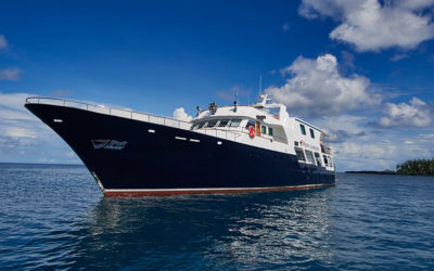 BLACK FRIDAY Special – For One Day Only! 50% off Dive Liveaboards in Bahamas, Truk, French Polynesia, Maldives and more…